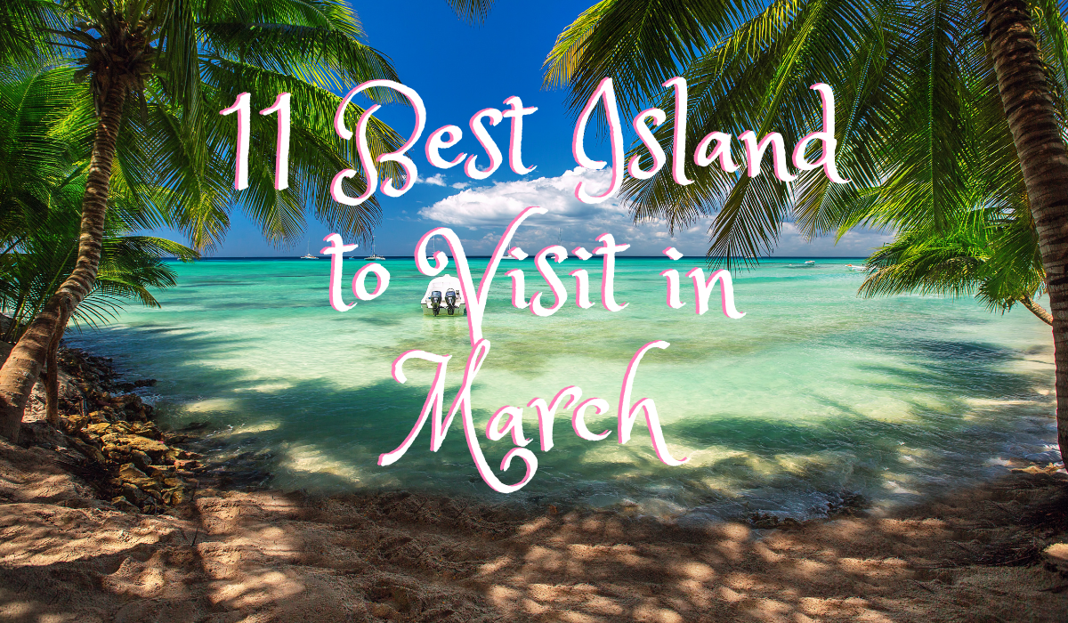 Resort with two coconut trees and its shadow with text 11 Best Islands to Visit in March